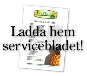 ladda_service